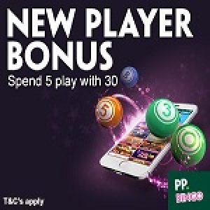 Paddy Power Bingo- English Bingo Sites